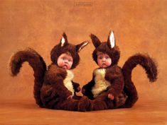 Anne Geddes Prints and Posters, Baby Posters and Prints Anne Geddes, Squirrel Art, Baby Squirrel, Baby Galerie, Cute Kids, Cute Babies, Squirrel Costume, Baby Posters, Fantasias Halloween