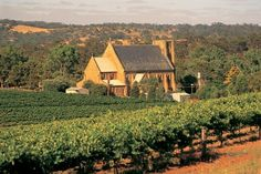 Sevenhill Winery in the Clare Valley SA. My favourite winery.