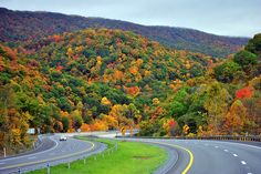 "Along Interstate 77 in West Virginia, ""Oh those hills, beautiful hills, how I love those WV hills....."""
