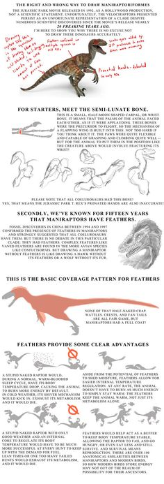 The Tutorial on How to Stop Drawing Stupid Raptors by Droemar on DeviantArt