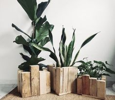 These planters were made using big blocks of reclaimed wood. Tap our link in bio to shop them from 🌿 Rustic Planters, Bois Diy, Indoor Plant Pots, Linseed Oil, Decorative Objects, Home Deco, Wood Projects, Solid Wood, Crafty