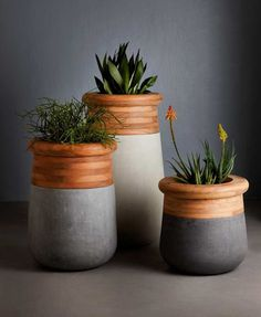 Soma Planter by Laurie Wiid van Heerden - Concrete and Wood