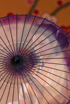 Japanese geisha and umbrella, Wagasa 和傘
