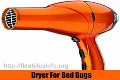 Bed Bugs don't spread any diseases, but their bites can be aching, leaving red spot. Read and learn what kills bed bugs fast and way to get rid of Bedbugs. What Kills Bed Bugs, Apple Cider Vinegar Dogs, Dog Itchy Skin Remedy, Rid Of Bed Bugs, Dog Itching, Pest Control Services, Fleas, Itching Remedies, Red