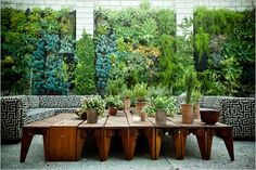 Outdoor lounge with green living walls and graphic upholstered seating