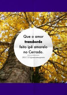 #autoajudadodia por @João Camargo! Nada como uma metáfora da natureza para nos lembrar o quanto o amor pode ser gigante a ponto de transbordar, né?