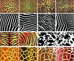 Illustration of animal skin textures, background patterns. Patterns In Nature, Textures Patterns, Zbrush, Giraffe Decor, Jungle Print, Texture Vector, Leather Pattern, Leopard Pattern, Illustrations