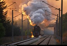 RailPictures.Net Photo: BDZ - Bulgarian Railways 03.12 at Grivitza , Bulgaria by yoli79bg
