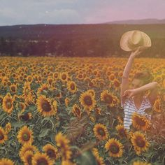 39 Likes, 3 Comments - Nina Happy Weekend, Sunflowers, Illustrations, Photography, Instagram, Photograph, Illustration, Fotografie, Photoshoot