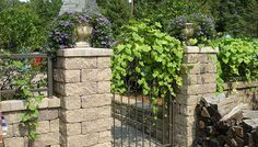 wood pile, plants growing on gate, purple flowers in pots, Entryways, Rails / Gates, Wrought Iron Fence