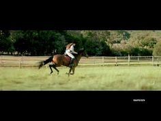 Bei wachsenden Ansprüchen... - YouTube Ads, Horses, Youtube, Animals, Money, Knowledge, Animales, Animaux, Animal