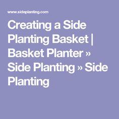 Creating a Side Planting Basket | Basket Planter » Side Planting » Side Planting