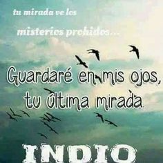 Indio Rock And Roll, Quotes, Princess, Texts, Truths, Love Phrases, Mariana, Song Quotes, Tattoos For Mothers