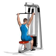 WIDE GRIP PULLDOWN BEHIND THE NECK INVOLVED MUSCLES DURING THE TRAINING LATS