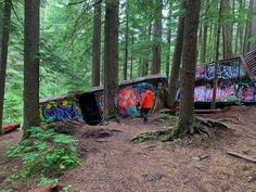 15 Unusual Hikes Near Vancouver | Happiest Outdoors Vancouver Hiking, Photography Basics, Abandoned Places, Hiking Trails, British Columbia, Paths, Road Trip, Wildlife, Outdoors
