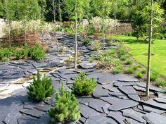 Reduce el consumo de agua de tu jardín: Sustituye el césped por otros meteriales | El blog de Plan Reforma, planifica y haz realidad tu obra