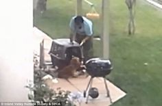 Quick links to share the petition: Max penalty for California man filmed while repeatedly beating Cocker Spaniel! | Yousign.org