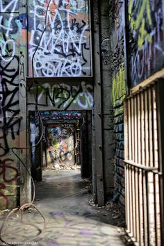 Abandoned Old LA Zoo (Hidden Gems in Los Angeles and Popular Filming Location for Movies) // localadventurer.com