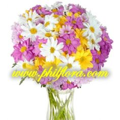 Order these two dozens ice catching colorful Malaysian Mums Bouquet for your Mom on Mothers Day. A special gift for the mother you really love and admire most. Wedding Flower Arrangements, Floral Arrangements, Wedding Flowers, Mothers Day Special, Special Gifts, Online Flower Shop, Carnations, Chrysanthemums, Flower Delivery Service