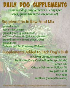 Natural Instincts Raw Dog Food Canada