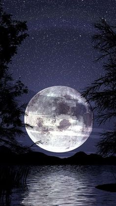 Beautiful Moon / PHOTOGRAPHY