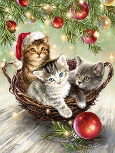 Vintage Christmas Cards With Kittens Vintage Christmas Cards With Kittens Th. christmas cats Animated picture Set of TWO Vintage Christmas Yorkie Terrier Dogs in Christmas Scenes, Noel Christmas, Christmas Greetings, Xmas, Christmas Wishes, Cat Christmas Cards, Holiday Cards, Christmas Kitten, Christmas Animals