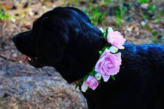 Wedding dog collarfloral dog bow tiepink от MarsDogShop на Etsy