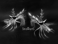 StrawartS Dragon Bros.