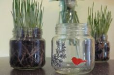 Crafty Uses for Baby Food Jars [perfect for my succulents!!]