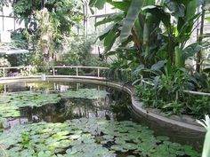 Botanical Garden Pond Small or large, a water feature adds interest to any landscape
