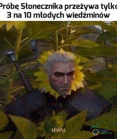 Different Languages, Memes, Meme