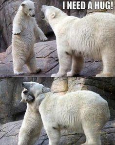 Very Funny Animals (20 Pics)