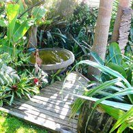 Tropical Garden Ideas Nz bali garden nz | plants | pinterest | bali garden, gardens and
