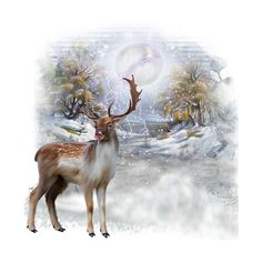 0_8f9b3_13eb25ad_XL.png ❤ liked on Polyvore featuring animals, christmas, xmas, tubes - winter and winter