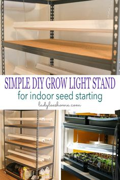 Seed Starting This DIY grow light stand will serve you for many years! It's simple to set up and holds many seed trays. It will help you grow strong and healthy seedlings. It's the perfect indoor seed starting shelving unit. Growing Seeds, Growing Plants, Growing Vegetables, Growing Seedlings, Growing Tomatoes, Indoor Grow Lights, Grow Lights For Plants, Cheap Grow Lights, Aquaponics Diy