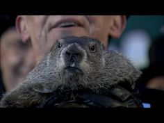February 23, 2015. We watched the video of Punxsutawney Phil seeing his shadow in 2015.