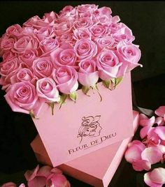 Beautiful Rose Flowers, Flowers Gif, Flowers For You, Flowers Nature, Amazing Flowers, Flower Box Gift, Flower Boxes, Beautiful Flower Arrangements, Floral Arrangements