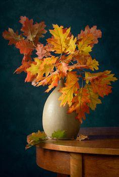 Fall Colors by Nikolay Panov