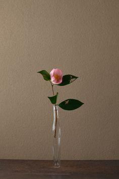2012年3月29日(木)   虫喰いの葉に、春という傷つきやすい季節を思いました。   花=椿(ツバキ)   器=古ガラス細瓶(20世紀)