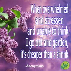 When overwhelmed and stressed and unable to think I go out and garden it's cheaper than a shrink. Life Inspiration, Garden Inspiration, Quotable Quotes, Wisdom Quotes, Garden Works, Olive Garden, Garden Journal, Garden Quotes, Garden Signs