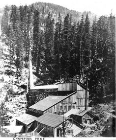 Champion Mine # 1 Stamp Mill  Bohemia Mining Dist. Oregon