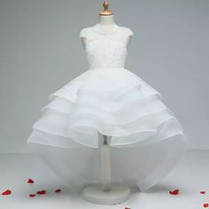 Cheap communion dresses, Buy Quality first communion dresses directly from China communion dresses for girls Suppliers: vinca sunny Lace High Neck Puffy Bridal Flower Girl Dresses 2017 First Communion Dresses For Girls vestidos primera comunion Cute Little Girl Dresses, Dresses Kids Girl, Girls Party Dress, Baby Dress, Girl Outfits, Flower Girl Dresses, Party Dresses, Dresses 2016, Kids Frocks