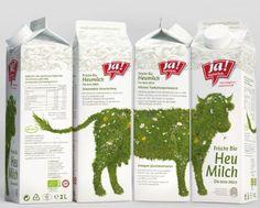 Internationaler Milchtag. Getränkekarton. Frames, Hay, Milk, Carton Box, Frame