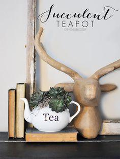 Succulent Teapot Pla