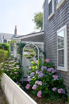 Weathered gray shingles, surrounded by Hydrangeas (Nantucket)