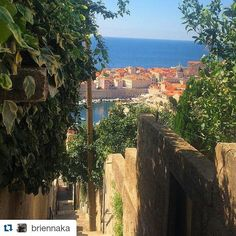 #Repost @briennaka  Everyday walk to school #apiabroad #dubrovnik #ispyapi