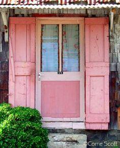 Caribbean pink...