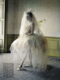 moth - Tim walker