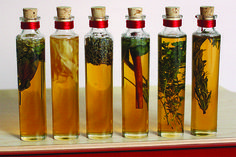 Delicious and easy to make, these infused honeys make great holiday gifts, all from your own kitchen. Make infusions with mint, ginger, lavender, thyme, basil...
