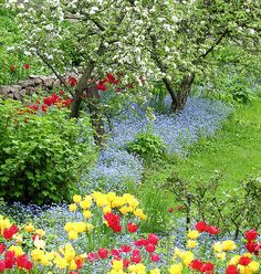 This is gorgeous! A nice set of flowers in a garden. Love the stone wall peeking out on the left...
